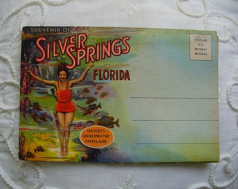Vintage Silver Springs Florida Postcard Folder