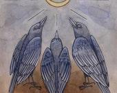 "8.5 x 11 - ""Brewer's Blackbirds"""