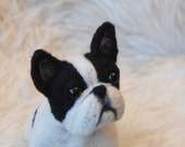 Needle felted French Bulldog, Handmade Animal,  - READY TO SHIP