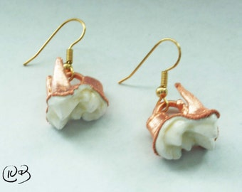 Copper coyote tooth earrings
