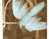 "Blue Bird, Instant Download, 8"" x 10"" to  16"" x 20"", Escaping A Cage, Bluebird, Sepia, Printable Artwork, Bird spreading Wings, Birdcage"