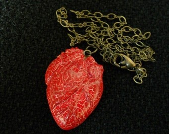 Human heart pendant Necklace Anatomical Heart Jewelery