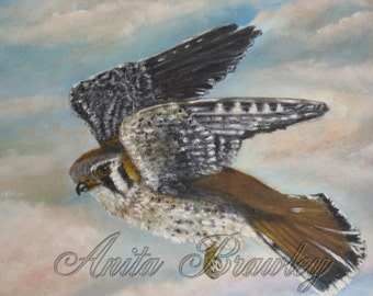 SALE! Evening Night Hawk Original Oil Painting – Shipping Included