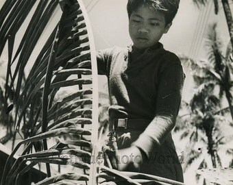 Philippines boy cutting palm branch antique art photo