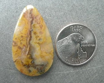 Graveyard Point Plume Agate Cabochon from Oregon  gypl7