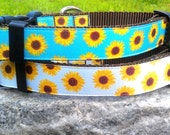 Sunflower 1 Inch Width Dog Collar
