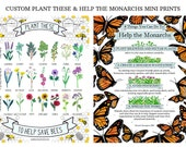 Mini Bee & Monarch Prints