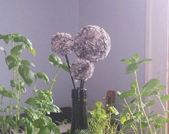 Paper Allium flawers