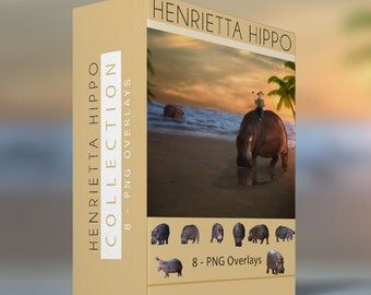 8 - Hippo PNG Ovelrays - Henrietta Hippo
