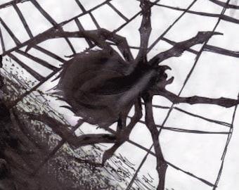 Dark Spider Paint