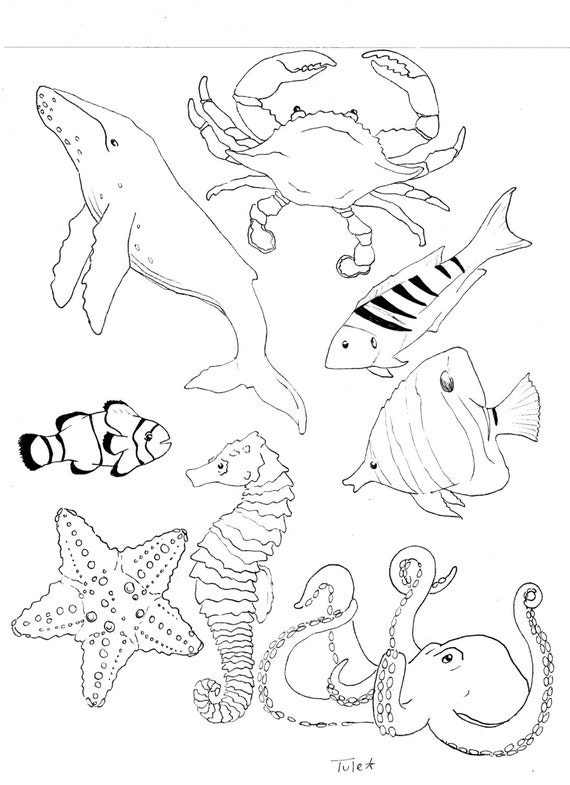 Sea Life Coloring Pages Ocean Life Coloring Book Page by SarahTuleArtworks on Etsy