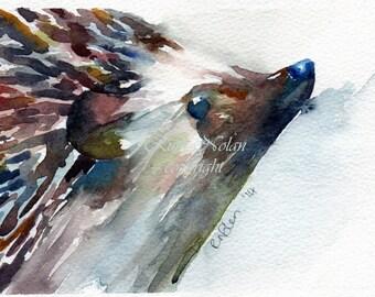 HEDGEHOG mounted watercolour print by Ruth Nolan