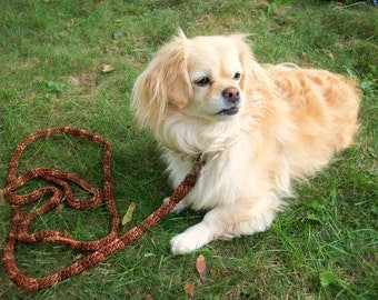 Brown Dog Leash for Small Dogs in a Four Foot Length.  Dog Training Leash. Variegated Brown VBRDL02
