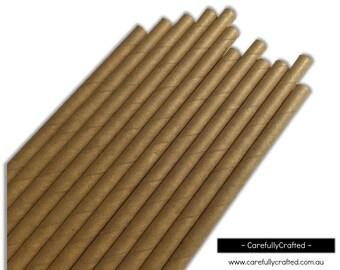 Paper Straws - Kraft - Solid - Set of 25 (19.5cm x 0.6cm) #PS65