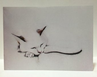 Greeting Card Fine Art Cat Card - Sleeping Cat