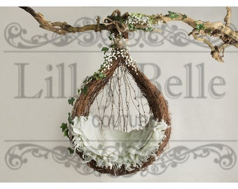 Digital prop/backdrop  (Green Ivy Hanging Vine Pod)