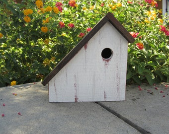 Bird house salt box 1