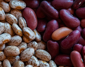 Beans - Fine Art - Wall Art - Inquire about Size & Frame Options
