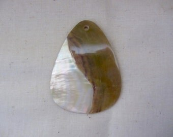 Shell Drop for Pendant