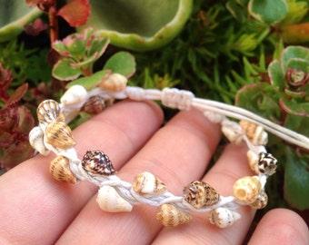 Handmade Gorgeous Seashell Wrapped Bracelet