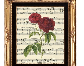 printable wall art, digital botanical print, botanical illustration,vintage rose print, music background print, music floral print, 8x10