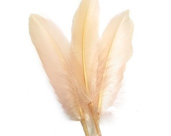 10 pc's x 15cm Blush Duck Feathers