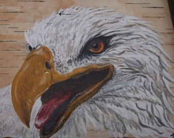 Bald Eagle on Birch Bark - Unique painting on White birch bark, Framed and sealed by Drifted Art - ONE OF A KIND - Original Art