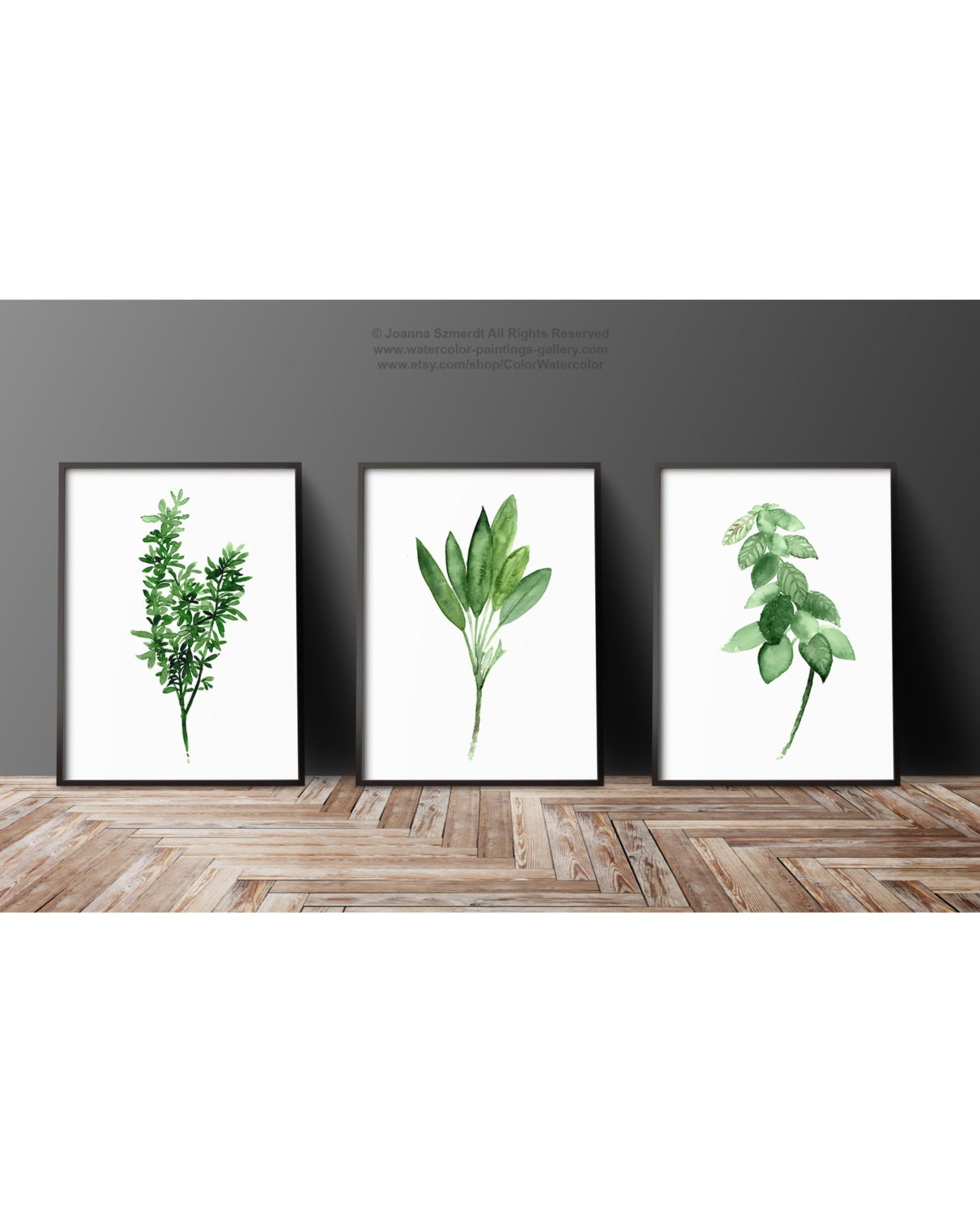 Dining Room Art Prints: Thyme Watercolor Painting Sage Art Print Basil Herb Kitchen