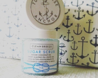 Clean Breeze Sugar ScrubTurquoise Anchor