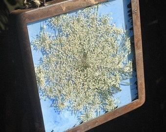 Hand Painted Framed Flower