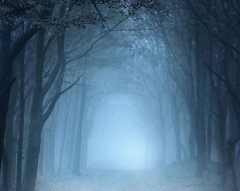 3x3 Dark Forest Pathway Scenic Photography Backdrop - Fab Vinyl 3x3 ft (FV5093)
