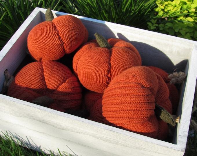 All natural felt play food - pumpkin