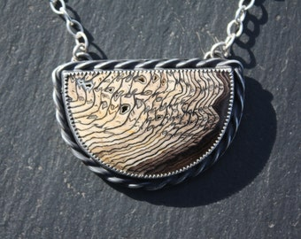 Hell's Canyon, Petrified Wood, Sterling Silver, Pendant