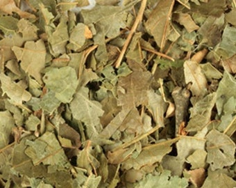 Witch Hazel Leaf - Certified Organic