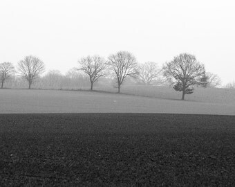 Travel Photography, Germany, Bare Trees, Farm Field, Black and White Fine Art Photography, Landscape, Snowstorm, Fog, Wall Art, Home Decor