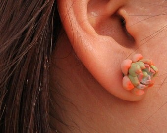 SALE___Succulent earring in polymer clay handmade