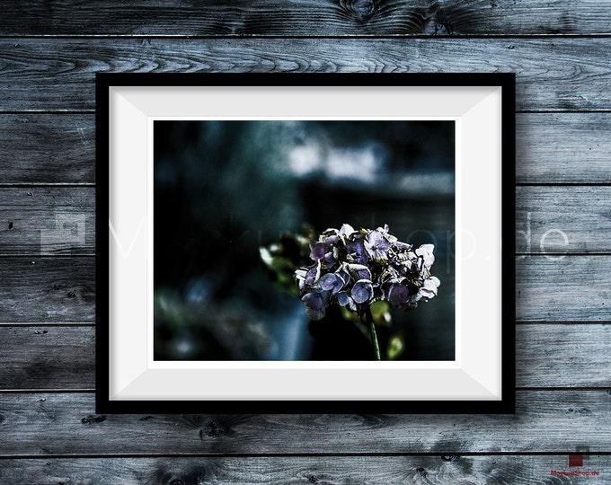 BLACK FRAME MOCKUP, Empty Mockup Frame, Black Frame Mock-Up, Digital Frame Mockup for download, Frame Mockup File for Photos, Download File