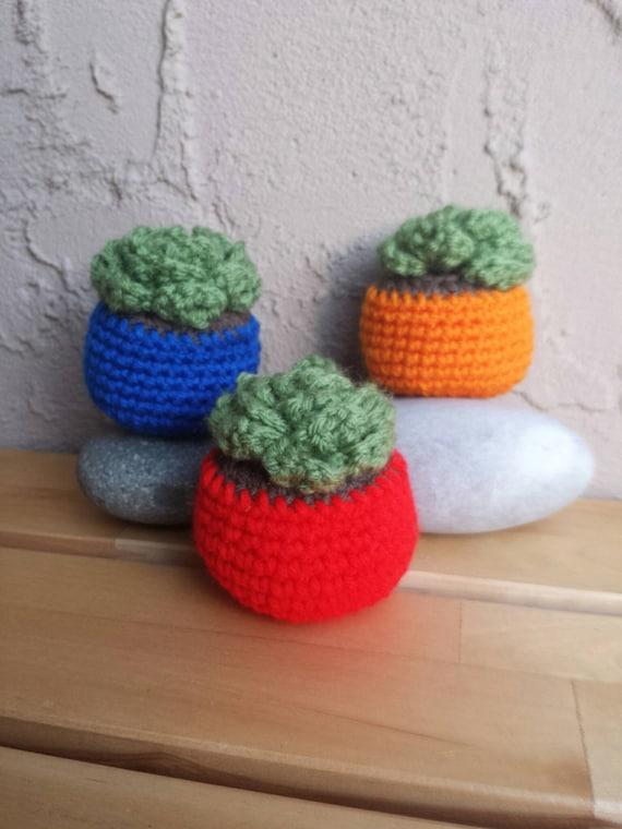 Etsy Amigurumi Cactus : Crochet Cactus Amigurumi Succulent Crochet by ...