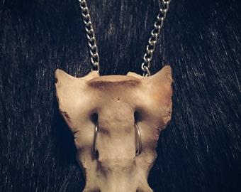 Animal Bone Necklace