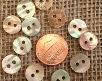 "Lot of 12 Small Red Abalone Natural Shell Buttons 7/16"" 11mm # 7341"