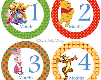 Monthly Baby Stickers Boy, Girl, Milestone Stickers, Month to Month Stickers Boy, Girl, Winnie The Pooh #38