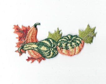 Pumpkins and Gourds with Leaves Iron on Applique 693888A