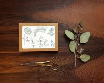 Botanical Letterpress Notecards, Box of 8