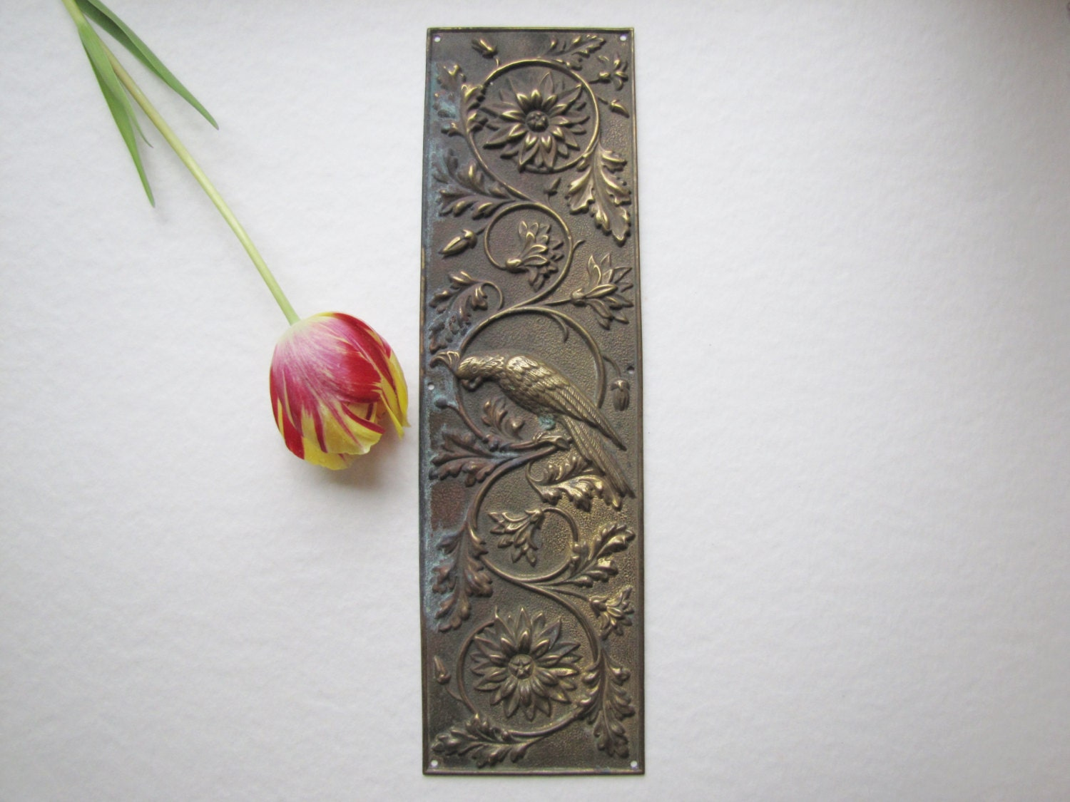 Victorian parrot door push plate antique brass finger plate for Door push plates