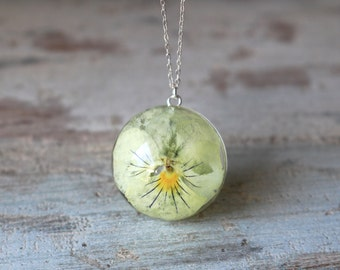 Real White Pansy Resin Sterling Silver Pendant Necklace