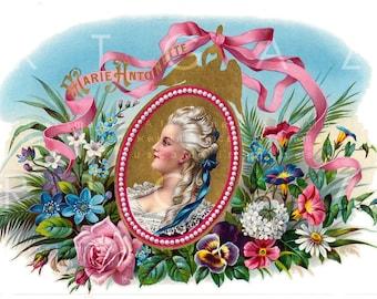 19th C Cigar Label Stunning Marie Antoinette Illustration. Vintage Marie Antoinette Digital Download. Marie Antoinette Printable.