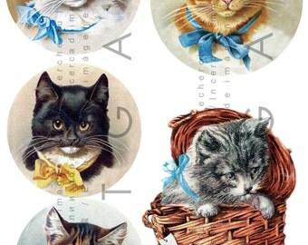 Cats 5 Adorable Antique Images. Vintage Cat Illustrations. Victorian Kitty Scraps. Cat Collage Sheet. Digital Cat Download.
