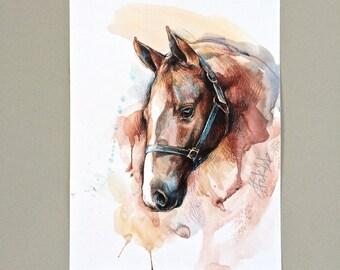 Horse ORIGINAL watercolor drawing illustration equine art gift home decor