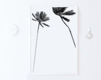 modern home decor-Tropical Print-Palm Tree PRINTABLE Poster-Minimalist Digital PRINT DOWNLOAD-Black and White Print-Palm Art-Palm Tree Print