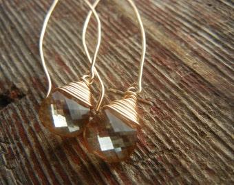 Swarovski Crystal Long Drop Earrings